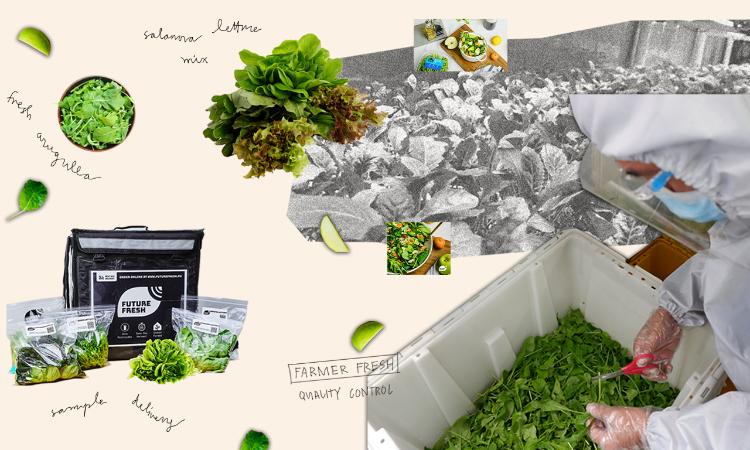 5 purveyors of fresh produce online