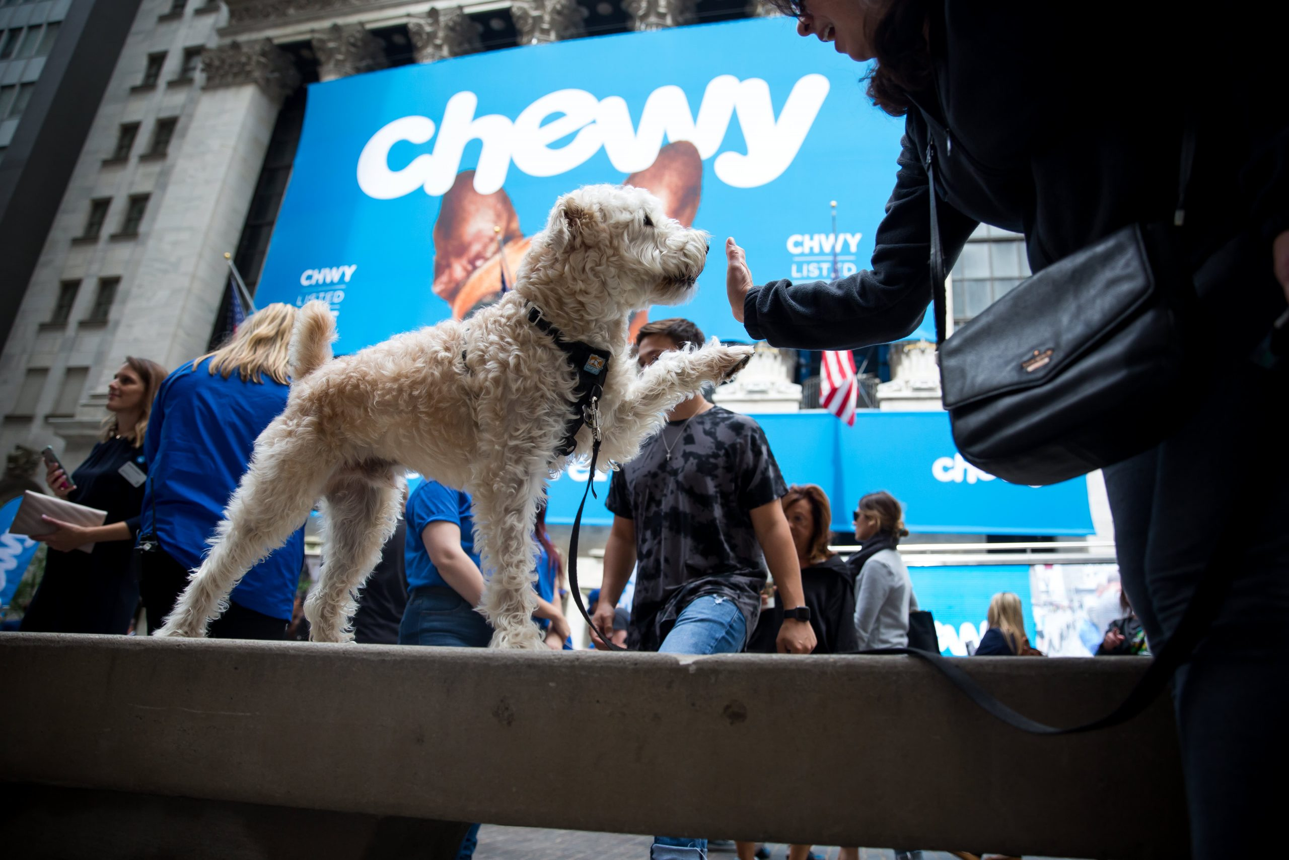 Chewy, Dave & Busters, Vertex Pharmaceuticals and more