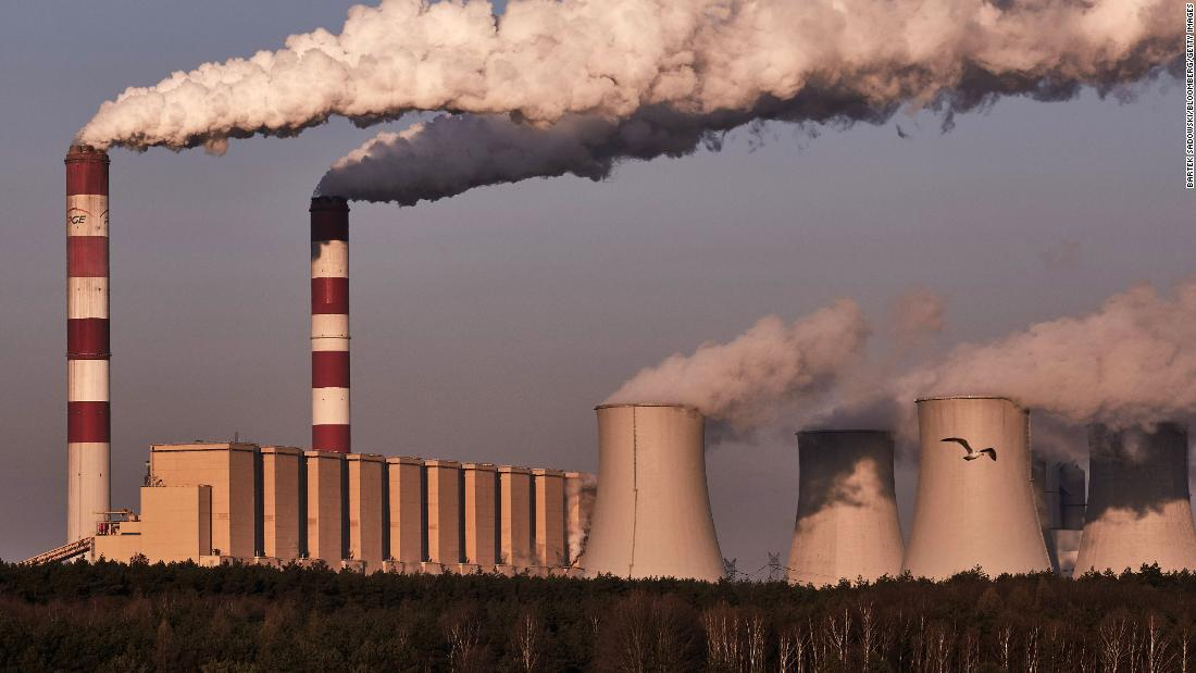 Climate crisis: CEOs urge world leaders to take bolder action