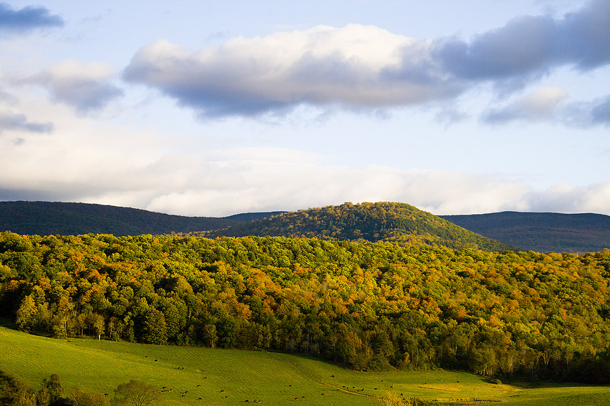 "Condé Nast Praises The Berkshires with Virtual ""Postcard"""