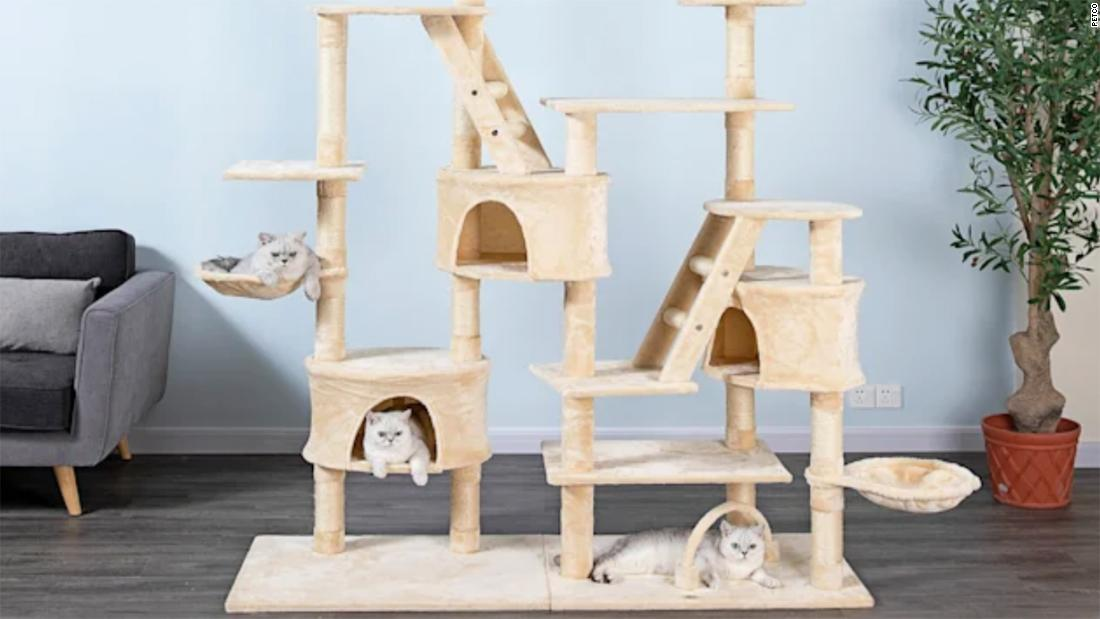 Petco's Ruff and Mews Sale: Save on pet supplies
